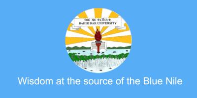 Blue Nile University Logo