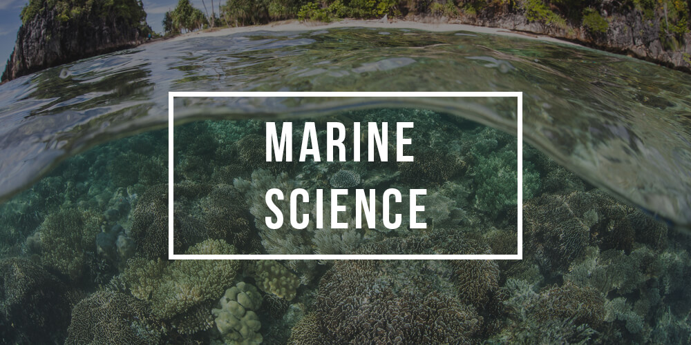 Major in Marine Science