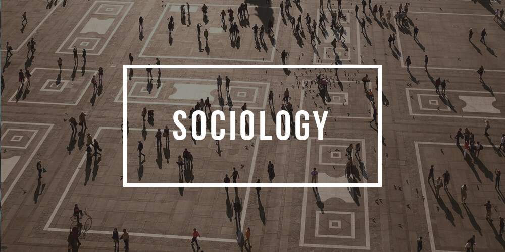 Major in Sociology